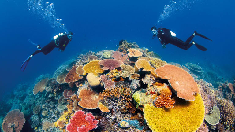 The Great Barrier Reef is one of Queensland's major tourist drawcards.
