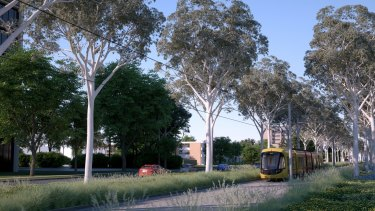 Using ACT government figures from an unsuccessful 2012 submission to Infrastructure Australia, the report says trams will deliver similar benefits to a bus rapid transit system in Canberra but cost more than twice the price.