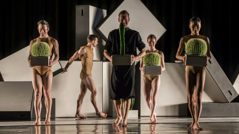 Alexander Ekman's <i>Cacti</i> features an array of cactus plants, which the dancers share the stage with.