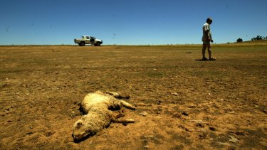 Rising temperatures and shifting rainfall patterns are likely to hit Australian farming hard.