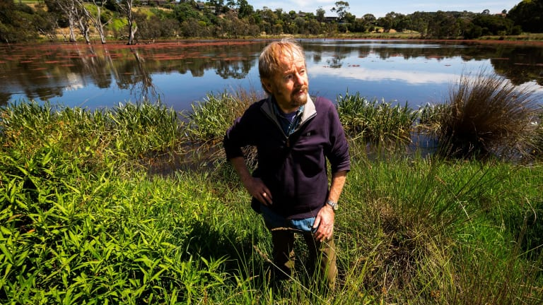 Friends of Banyule president Dennis O'Connell at Banyule Flats Reserve this week.