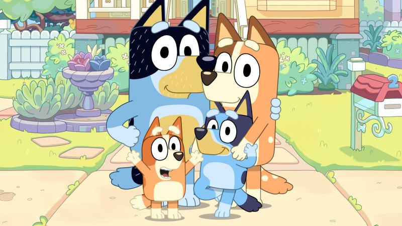 Children's cartoon series Bluey challenges the notion of