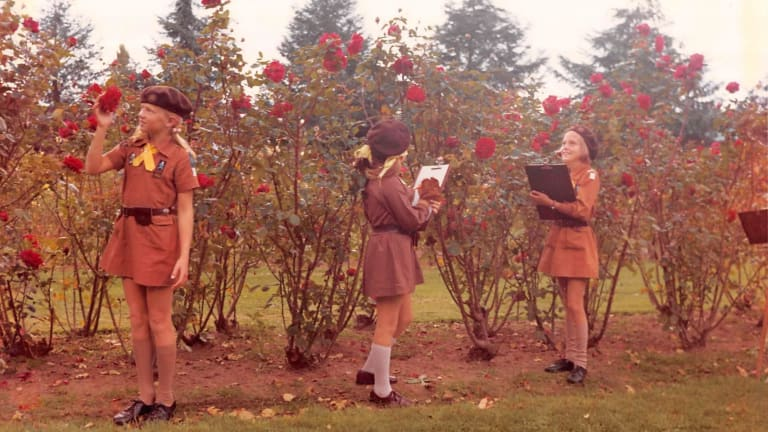 2nd Hughes Brownies in 1974 in what looks like the OPH rose garden.
