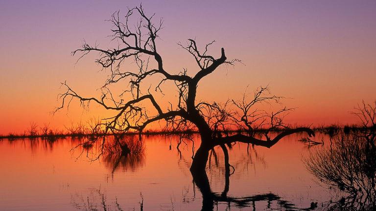 Reflections in Lake Menindee at sunset, Kinchega National Park,NSW .