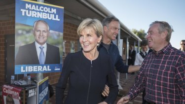 Julie Bishop was highly critical the last time the AEC had issues counting votes in WA.