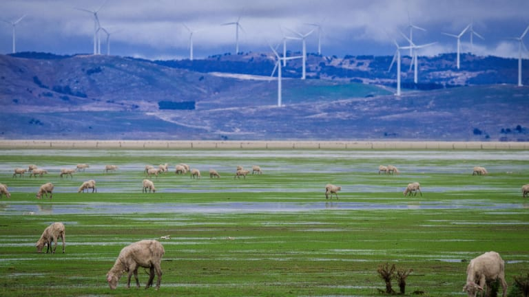 The proposed Jupiter wind farm would be close to two other wind farms, including the one at Lake George, and a solar farm.
