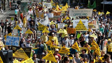 Hundreds of fracking protesters marched along Bourke street to the steps of Parliament House.