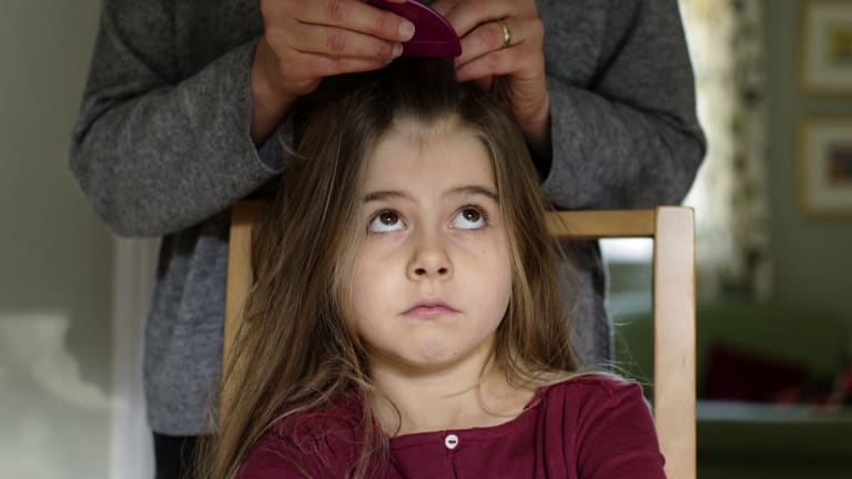 A young girl being treated for head lice.