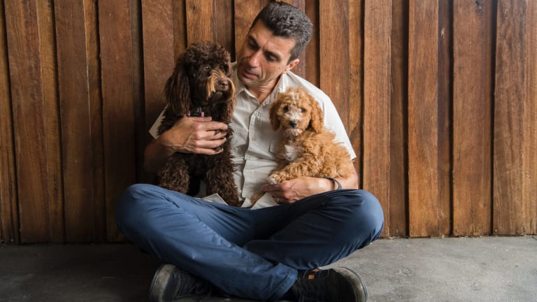 John Grima with his cavoodle Coco,11 months old, and nine-week-old puppy at his Kellyville Pets shop.