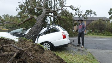 David Mooy's car was crushed in Arcadia Vale, a suburb of Lake Macquarie.