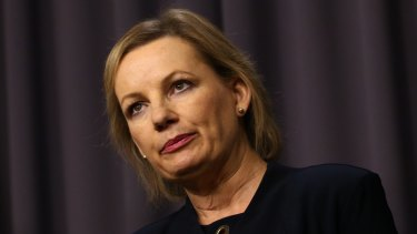 "Former health minister Sussan Ley said in 2015 health funds were issuing ""junk"" policies to keep budget conscious customers."