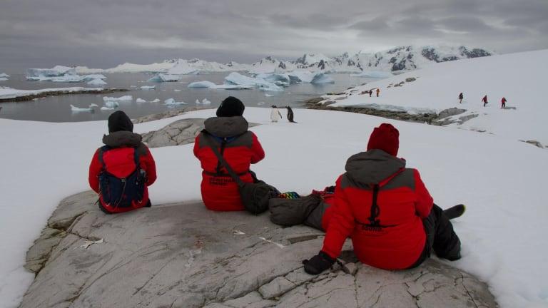 Homeward Bound 2016 participants observe gentoo penguins at Portal Point on the Antarctic Peninsula.