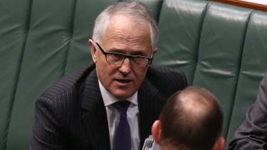 Communications Minister Malcolm Turnbull is the preferred Liberal Party leader.
