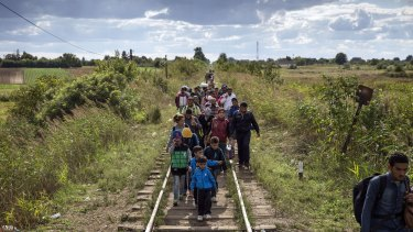 Constant flow ... Migrants cross into Hungary as they walk over railroad tracks at the Serbian border with Hungary.