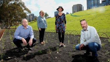 From left, Ian Shears, Leanne Hanrahan, Audrey Gerber and John Rayner at the wooded meadow at Birrarung Marr.