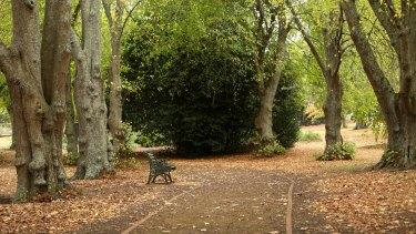 Camperdown Botanic Gardens.