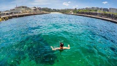 Six of the best snorkelling spots in Sydney