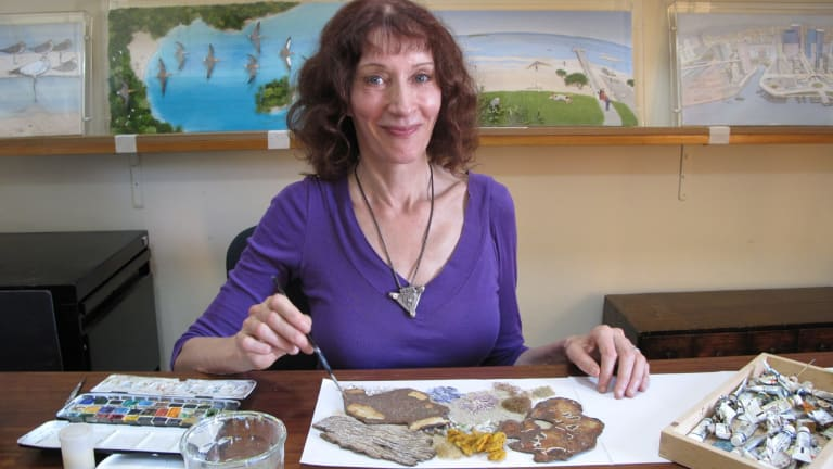 Jeannie Baker in her Balmain studio. Her collage illustrations are held in public collections and have been exhibited internationally.