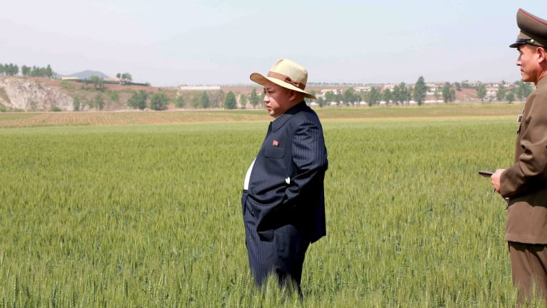 North Korean leader Kim Jong Un visits Farm 1116 in an undated photo released by North Korea's news agency.