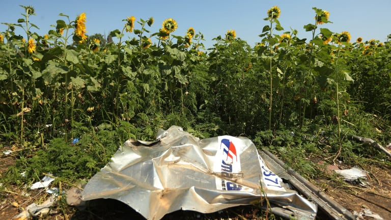 A piece of plane debris at one of the sites where the front section of MH17 crashed.