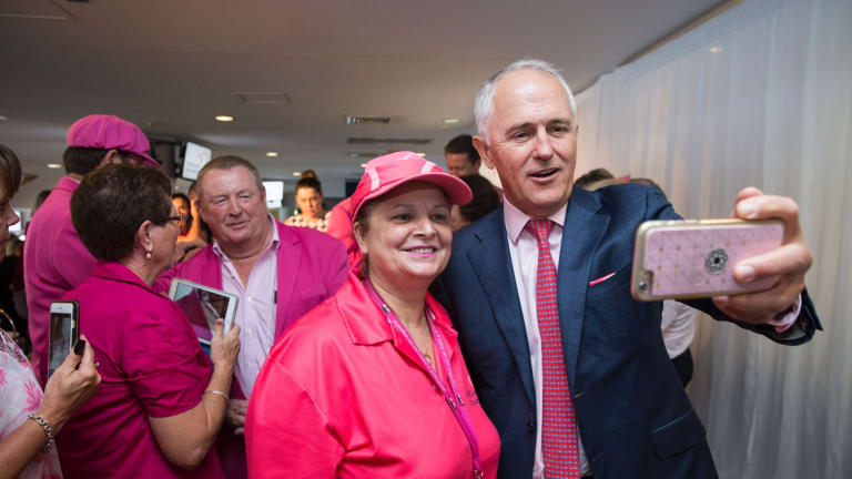 """The Sussan Ley """"distraction"""" is a disaster for Malcolm Turnbull, pictured at the cricket in Sydney last week, when he can least afford to confront one."""