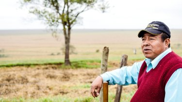 Kaiowa elder Virgilio has plans for the reforestation of what is today a cattle station on land the Kaiowa hope to regain.