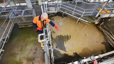 Operator David Murray measures sludge depth at the primary tank scum collectors of the Eastern Treatment Plant at Bangholme.