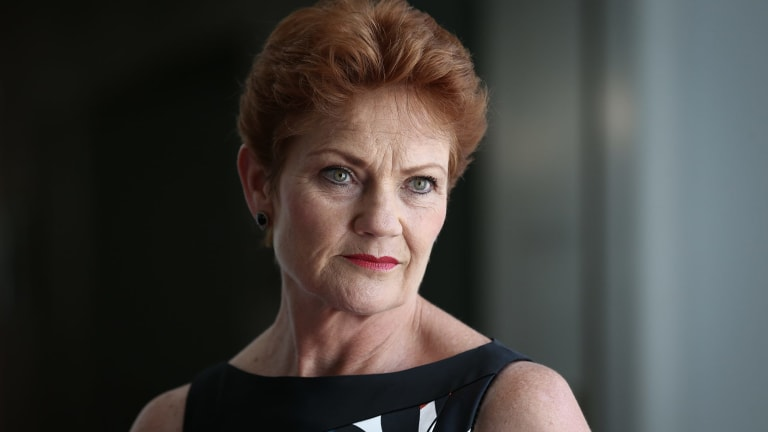 Pauline Hanson's One Nation holds four seats in the new Senate.