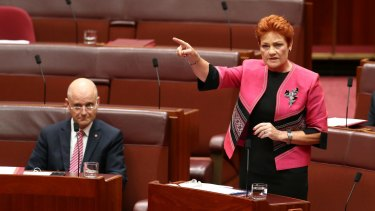 """Senator Pauline Hanson benefited from a surge in popularity but the United Nations has warned against """"normalising"""" her views."""