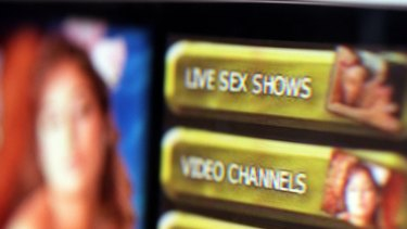 More than 850 pornographic websites were banned under the short-lived crackdown.