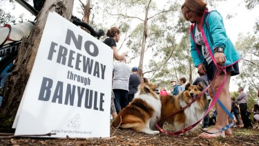 Dogs and their owners gathered at a park in Balwyn North to protest the planned road project.