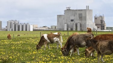 Warrnambool Cheese and Butter has posted a $1.2 million loss, citing a collapse in global dairy prices, and a farm-gate price that did not reflect the rout.