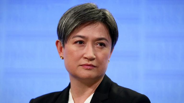 Senator Penny Wong criticised commentators who have sought to strip the element of love from marriage.