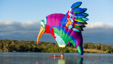 Canberra Balloon Festival 2018. The Hummingbird hot air balloon sits on the water.