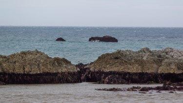 hoto- Ricky Wilson/Fairfax NZ Ward Beach Rocks have risen considerably since a 7.5 earthquake.