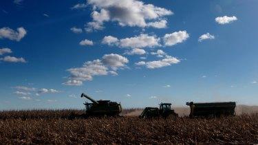 Corn harvesting at Breeza Station on the Liverpool Plains.
