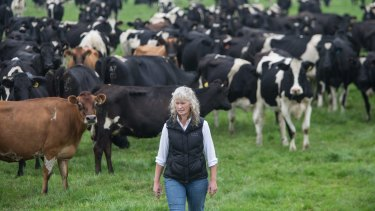 Dairy farmer Kate Lamb described Murray Goulburn's milk price cut as ''a kick in the guts''.