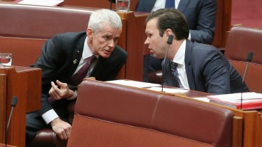 Senators Malcolm Roberts and Matt Canavan, who have both been caught up in questions over dual citizenship.
