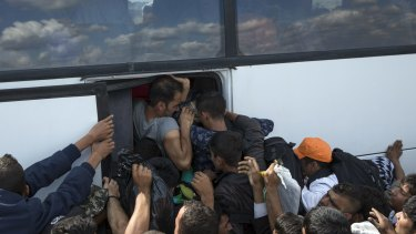 Migrants who crossed the Serbian border into Hungary fight to get on a bus.