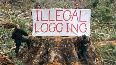 Environmental activists in East Gippsland.