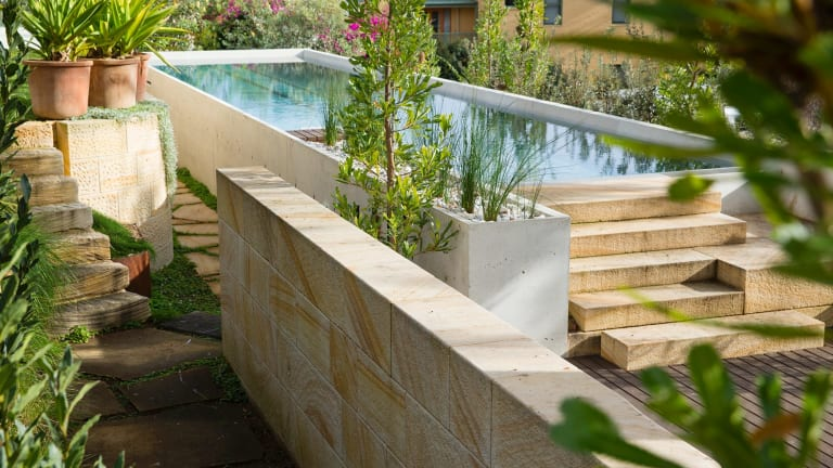 Michael Bates' garden in Birchgrove, Sydney.