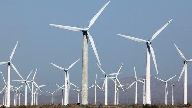 "Wind farms ""kill all the birds"", said US President-elect Donald Trump."