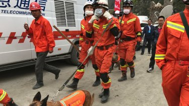 Rescuers with search dogs near the site of the Xinmo landslide in south-western China's Sichuan Province.
