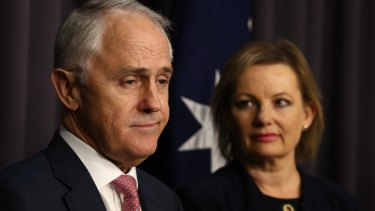 The federal government's Health Care Homes trial – announced in the May budget by Prime Minister Malcolm Turnbull and Health Minister Sussan Ley – is the target of a radical plan to transform Medicare.