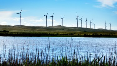 Prime Minister Tony Abbott believes wind farms are 'visually awful' and cause health problems.