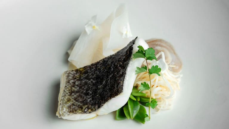 Go-to dish: Murray cod with angasi oyster, white radish, miso and celeriac.