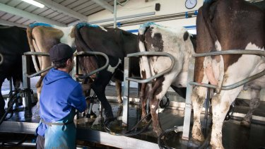 Fonterra sold the equivalent of 271 million litres of milk in consumer and food-service products to China in the quarter ended October 31.