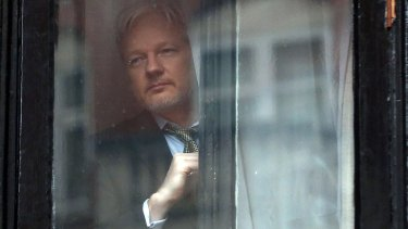 Assange looks out from the Ecuadorian embassy in London.