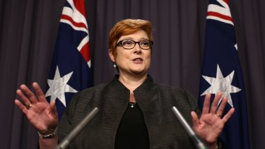 Defence Minister Marise Payne has inherited a portfolio in need of leadership and stability.