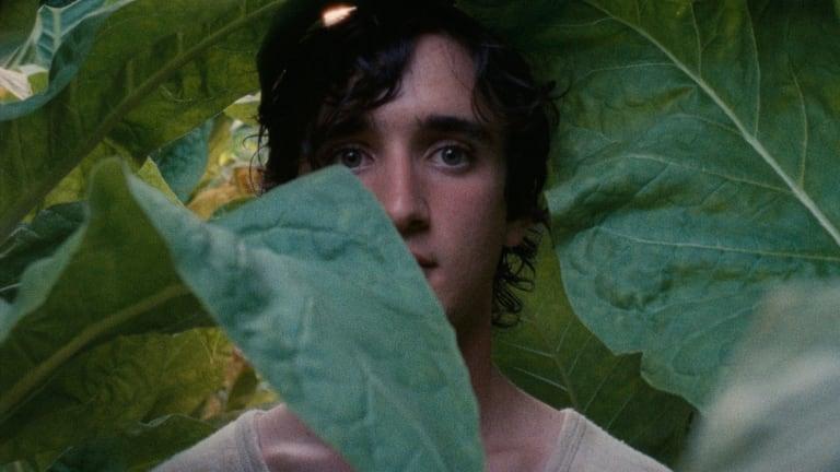 Happy as Lazzaro has a number of surprises up its sleeve.